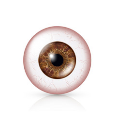 Conjunctivitis red eye human eyeball with vector
