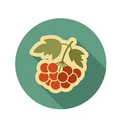Rowan branch flat icon berry fruit vector