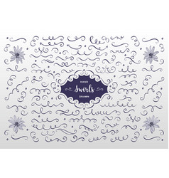 swirls and flourish collection hand drawn vector image vector image