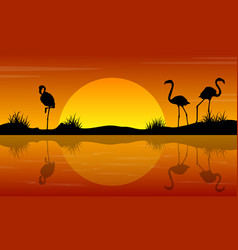 Lake scenery with flamingo at sunset silhouettes vector