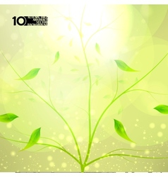 Autumn background colorful environment leaf vector image vector image