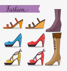 stylish woman fashion accesories vector image vector image