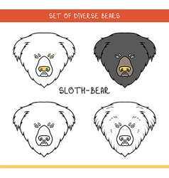 Sloth bear set isolated face heads bear in lines vector