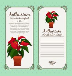 Vintage label with anthurium plant vector