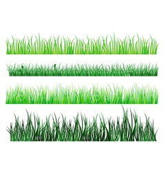 Grass and field elements vector