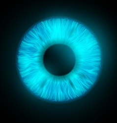 Iris of the human eye vector