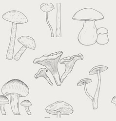 Different mushrooms outline seamless pattern hand vector