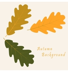 Abstract background with autumn oak leaves vector