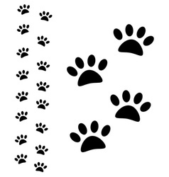 Animal paw path vector