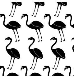 flamingo bird tropical pattern image vector image