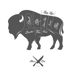 Vintage butcher cuts of bison buffalo scheme vector