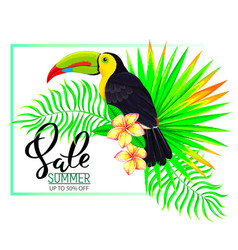 Summer sale composition with toucan flowers and vector