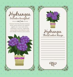 Vintage label with hydrangea plant vector