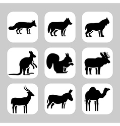 Animals2 vector