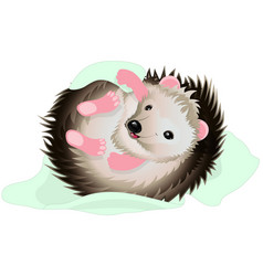 cartoon hedgehog with blanket vector image vector image