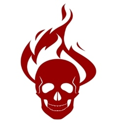 Skull and fire vector