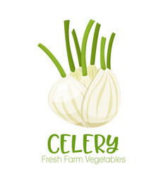 celery isolated on white background vector image vector image