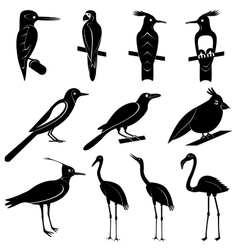 Collection of bird silhouettes vector
