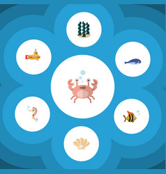 Flat icon nature set of alga hippocampus cancer vector