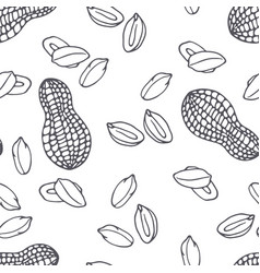 hand drawn outline seamless pattern with peanuts vector image
