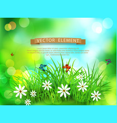 Green grass with white flowers butterflies vector