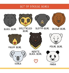 Set 9 muzzles bears handmade in linear style bear vector