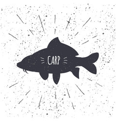 hand drawn common carp icon fish in black and vector image
