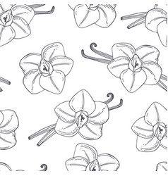 Hand drawn outline seamless pattern with vanilla vector