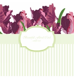 Tulip flowers card vector