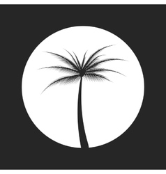 silhouette of palm tree vector image