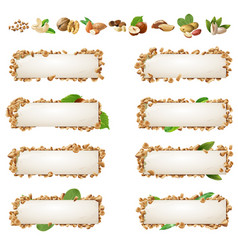 set banners with different kinds of nuts vector image vector image