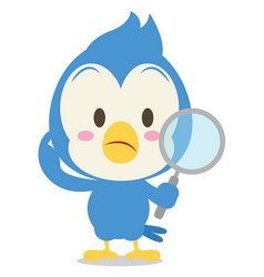 blue jay with magnifying cartoon vector image