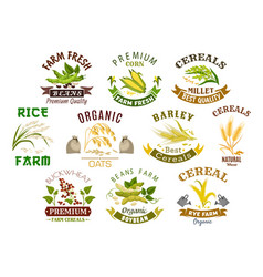 grain and cereal product isolated icons vector image vector image