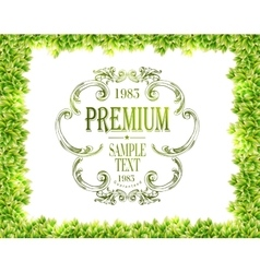 Green leaves texture and green typography vector image vector image