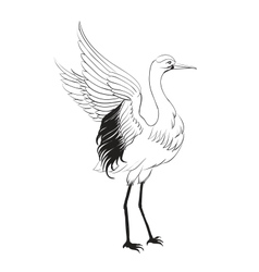 Heron isolated over white vector
