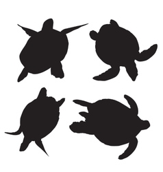 Turtle silhouettes vector