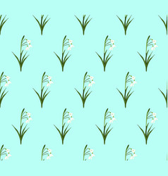 white snowdrop seamless on green mint background vector image