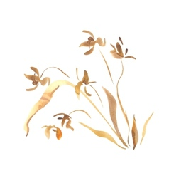 Wild orchid flower watercolor painting vector