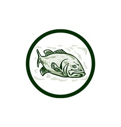 Largemouth bass fish front side circle cartoon vector