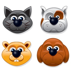 Domestic Pet Masks vector image vector image