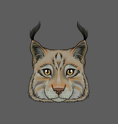 head of lynx portrait of wild serval cat animal vector image