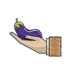 Organic eggplant vegetable in the hand icon vector