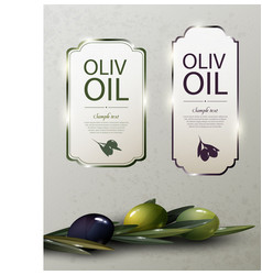 olive oil glossy brand logos vector image