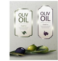 Olive oil glossy brand logos vector