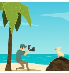 Bird and photographer cartoon characters vector