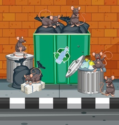 Dirty rats all over trashcans vector image vector image