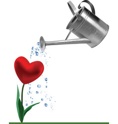 heart and watering can vector image
