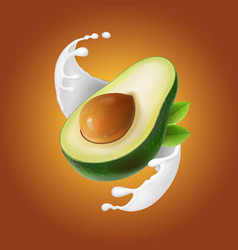 Milk splash with avocado fruit vector