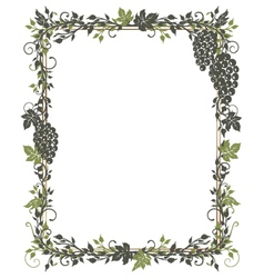 Vine leaves grapes frame vector