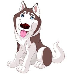 Cute husky vector